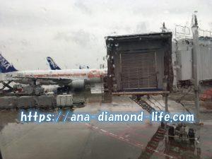 ANA飛行機STARWARS雨天