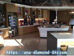 Ambassador Transit Lounge3